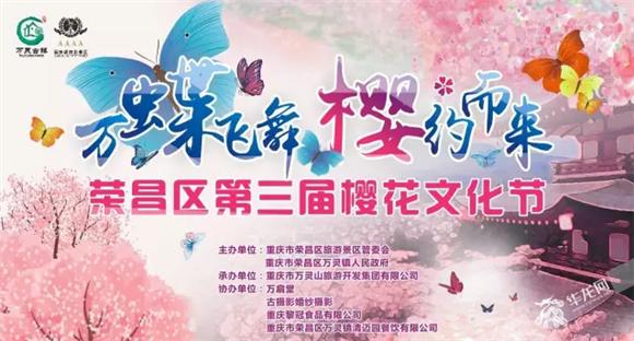荣昌区第三届樱花文化节 万灵山旅游开发有限公司供图.png