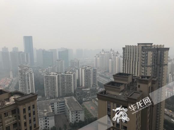 今天是个阴天,气温不高。记者 石涛 摄.jpg