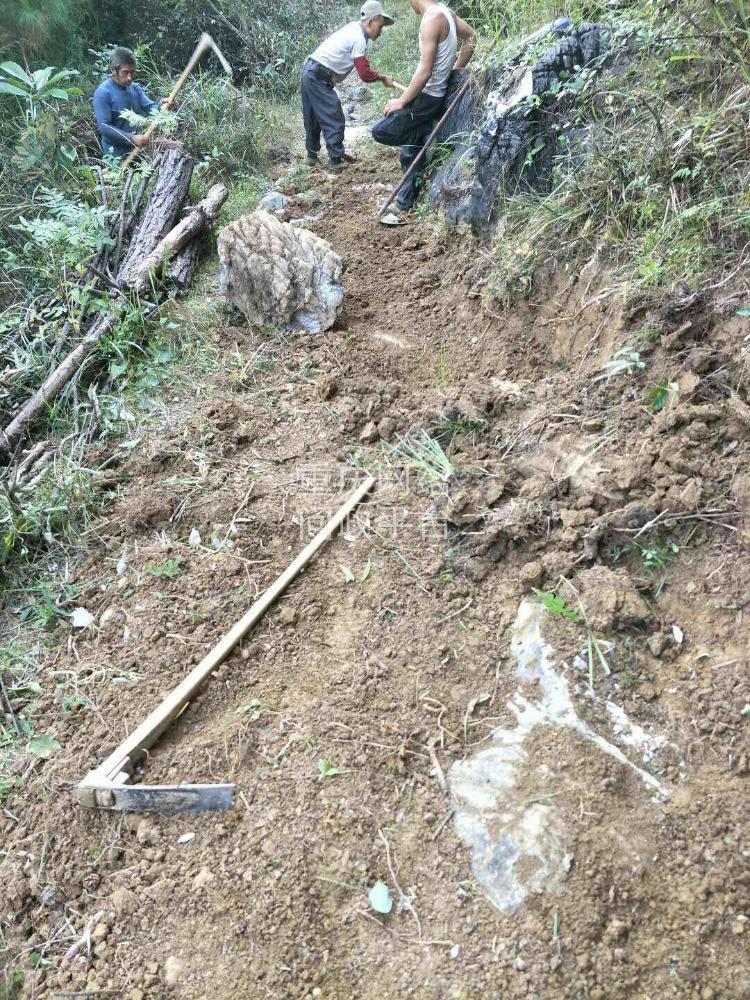 二       酉阳县庙溪乡荆竹距子岩  到处修路是不是规划的五公里