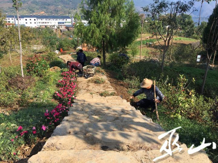工人在水生植物博览园栽花。.JPG